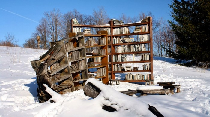 Bookcases in snow Cazenovia art park Emma Brodeur